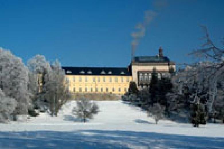 Дни в замке в Чехии