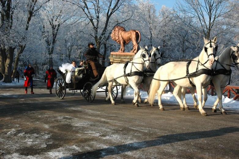 Зимой в замке Чехии